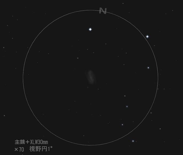 ししの鼻先の銀河/NGC2903